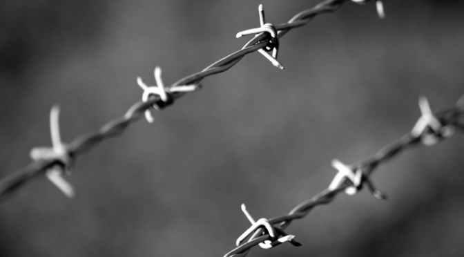 構造的暴力とは?: 医療人類学による社会構造の批判